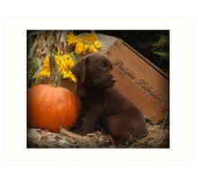 Will you share the pumpkin? Art Print
