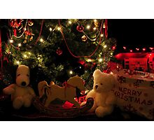 MERRY CHRISTMAS.....(photo by Marie Will) Photographic Print