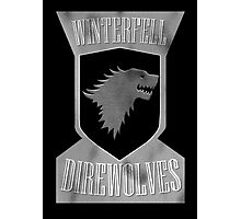 Winterfell Direwolves Photographic Print