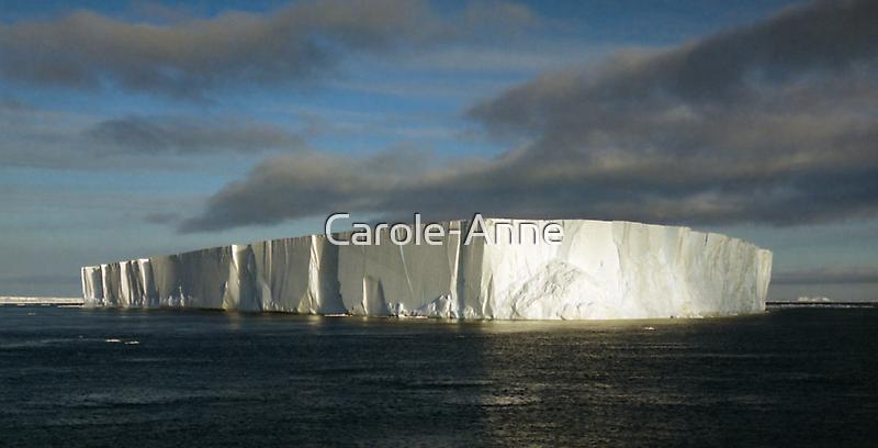 Panoramic Iceberg, Ross Sea, Antarctica by Carole-Anne