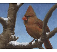 Cardinal 1 - Christmas card by llawrence