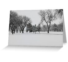 Texas Snow Greeting Card
