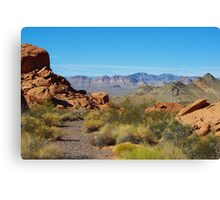 Desert near Lake Mead, Nevada Canvas Print