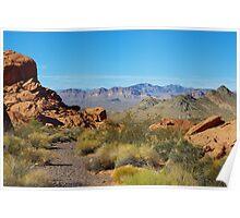 Desert near Lake Mead, Nevada Poster