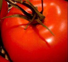 """Tomato"" by Chip Fatula by njchip123"