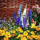 """Garden Flowers 2"" by Chip Fatula by njchip123"