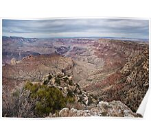 The Grand Canyon (South Rim) Poster