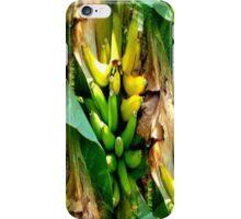"""Banana Tree in Front Yard""  iPhone Case/Skin"
