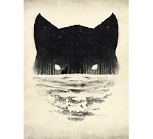 Wolfy Photographic Print