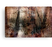 Winter Trees 4 Canvas Print