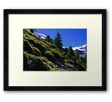 Down Hill in Swiss Alps Framed Print