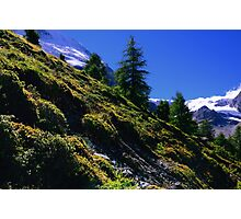Down Hill in Swiss Alps Photographic Print