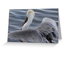Pelican's Elegance - Elegancia Del Pelicano Greeting Card
