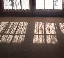 curtain shadows by Penny Rinker