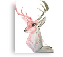 Dream Stag Canvas Print
