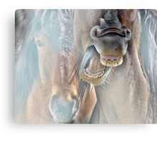 Ya need a Dentist Canvas Print
