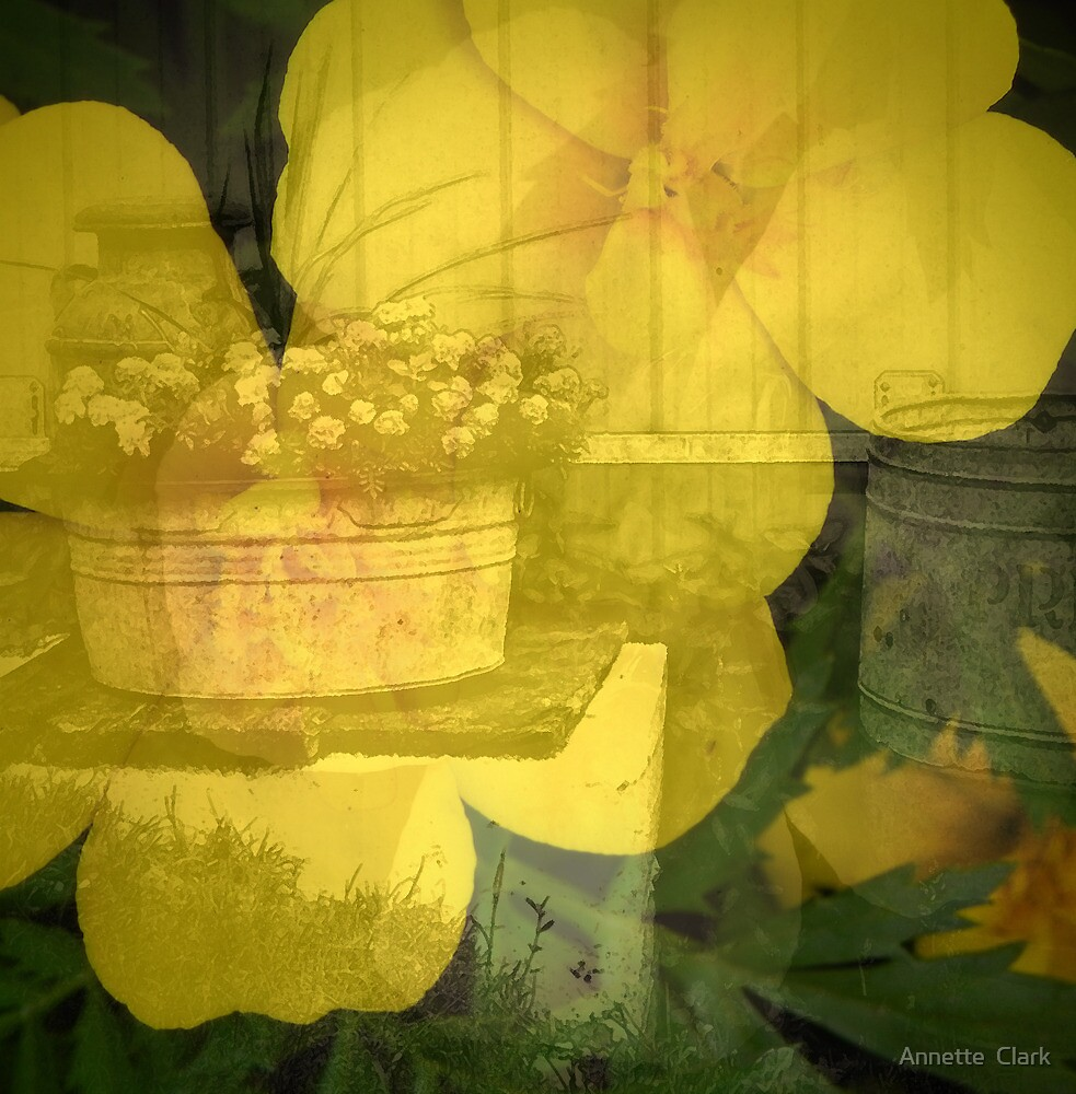 Barns and Blooms: Marigold and Washtub by Annette  Clark