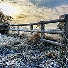 138 Frosty Evening, Cheshire by George Standen