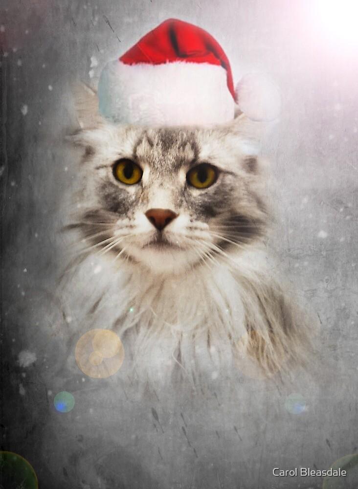 Happy Christmas! by Carol Bleasdale