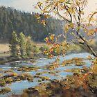Autumn Afternoon by Karen Ilari
