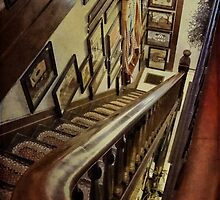 Up or down? by vigor