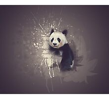 Cute Abstract Panda Photographic Print