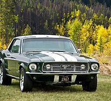 1967 Mustang by DaveKoontz