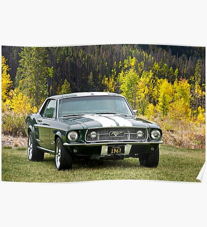 1967 Mustang Poster