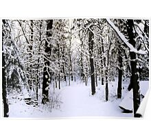 wintery Poster