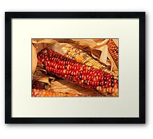 Fall Corn Framed Print