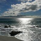 Silvery Swirlaway: East Coast Beaches, Tasmania, Australia by linfranca