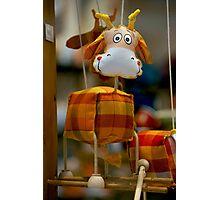 Plaid Cow Photographic Print