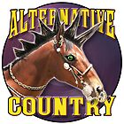 Alternative Country 02 by Ben Tiefholz