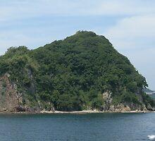 Island in sea by pisarevg