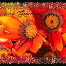 Seasons Greetings by Elaine Game