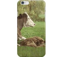 cow and calf in field iPhone Case/Skin