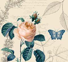 Peach Rose Vintage by pencreations