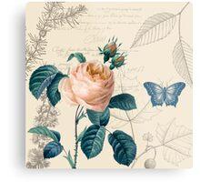 Peach Rose Vintage Metal Print