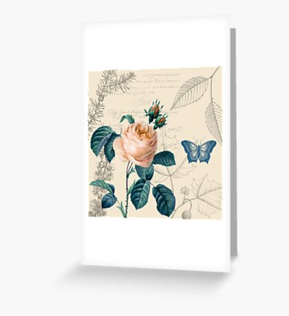 Peach Rose Vintage Greeting Card