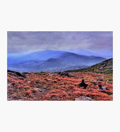 Resting at Jefferson Alpine Highlands Photographic Print