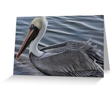 Nature's Beauty - Belleza De La Naturaleza Greeting Card
