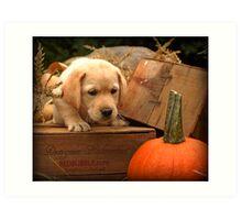 If that pumpkin moves... Art Print
