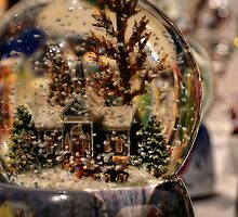 Snow Globe Wonderland by StudioBCreative