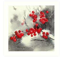 Red Berries,White Snow Art Print