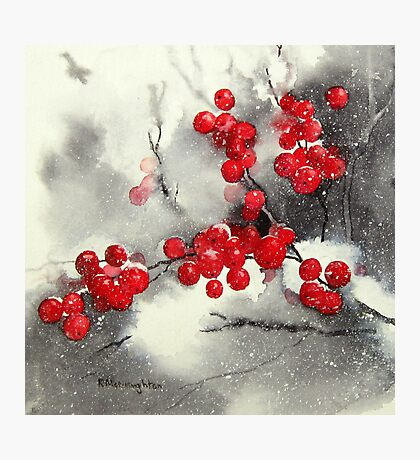 Red Berries,White Snow Photographic Print