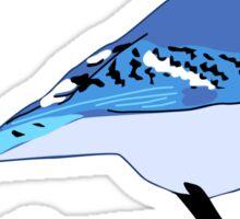 Blue Jay Bird Sticker
