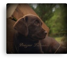 Chocolate Elegance! Canvas Print