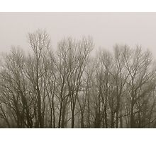 Fingers in the Fog Photographic Print