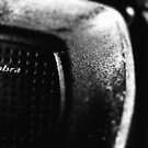 Cobra by Thomas Eggert