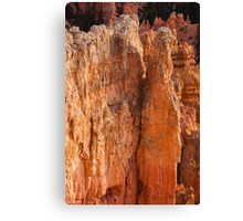 Exposed Geology Canvas Print